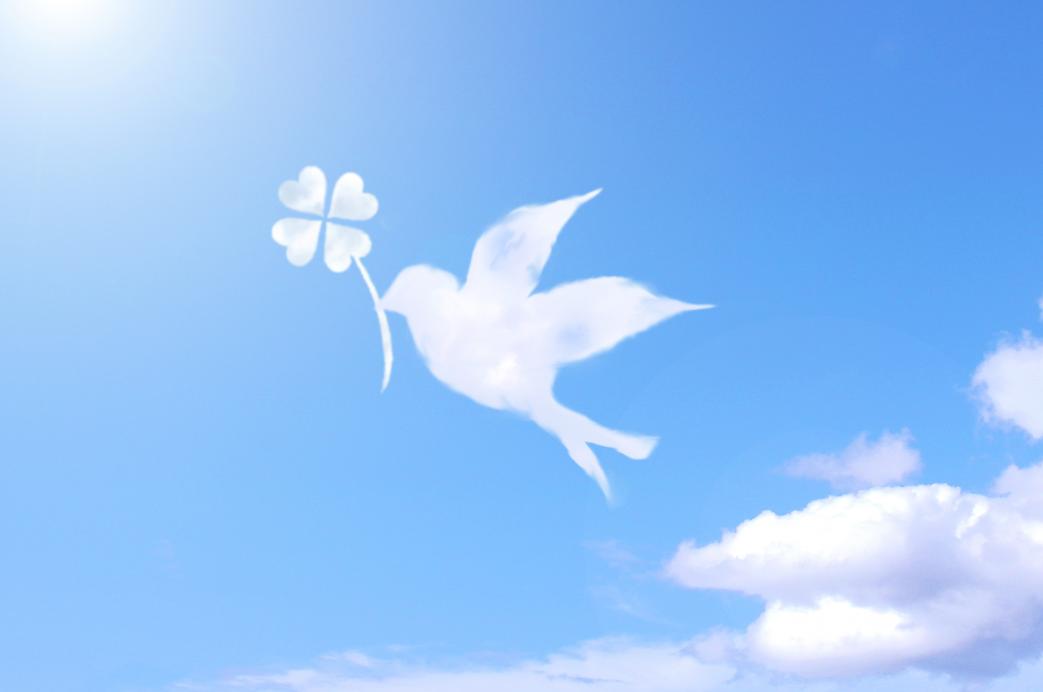 クローバーと鳥の雲